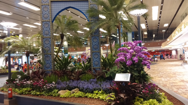 Image result for piazza garden changi airport