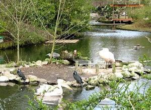 Parc Zoologique