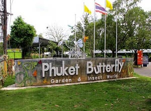 Phuket Butterfly Garden and Insect World