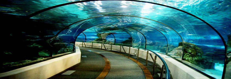 Laquarium de barcelona barcelona halal trip for Aquarium de barcelona