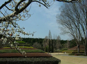 Chiba Prefectural Flower and Tree Center