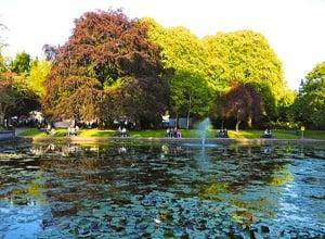 Firtzgerald's Park