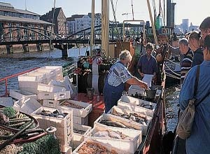 Fishmarket Hamburg