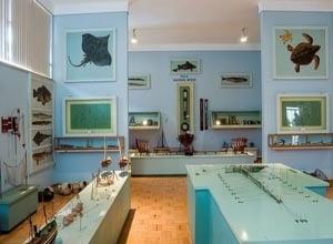 Museu do Marítimo Almirante Ramalho Ortigão