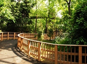 Queens Zoo