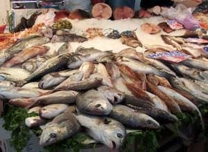 Tran Phu Fish Market