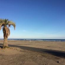 Motosuka beach