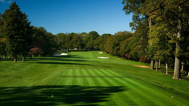 How Green are Golf courses?