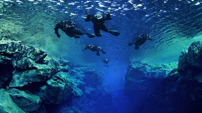 Are you planning on a snorkeling trip?