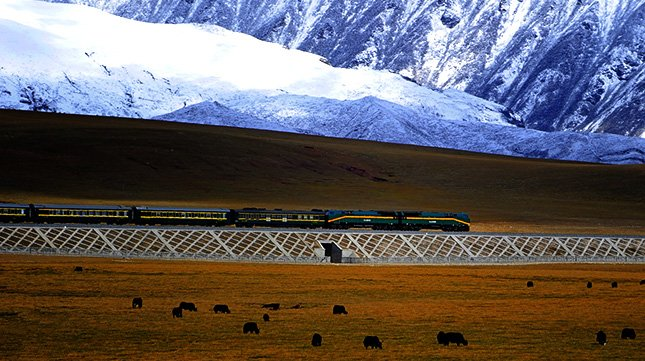 Qingzang Railway in China | Qinghai to Tibet