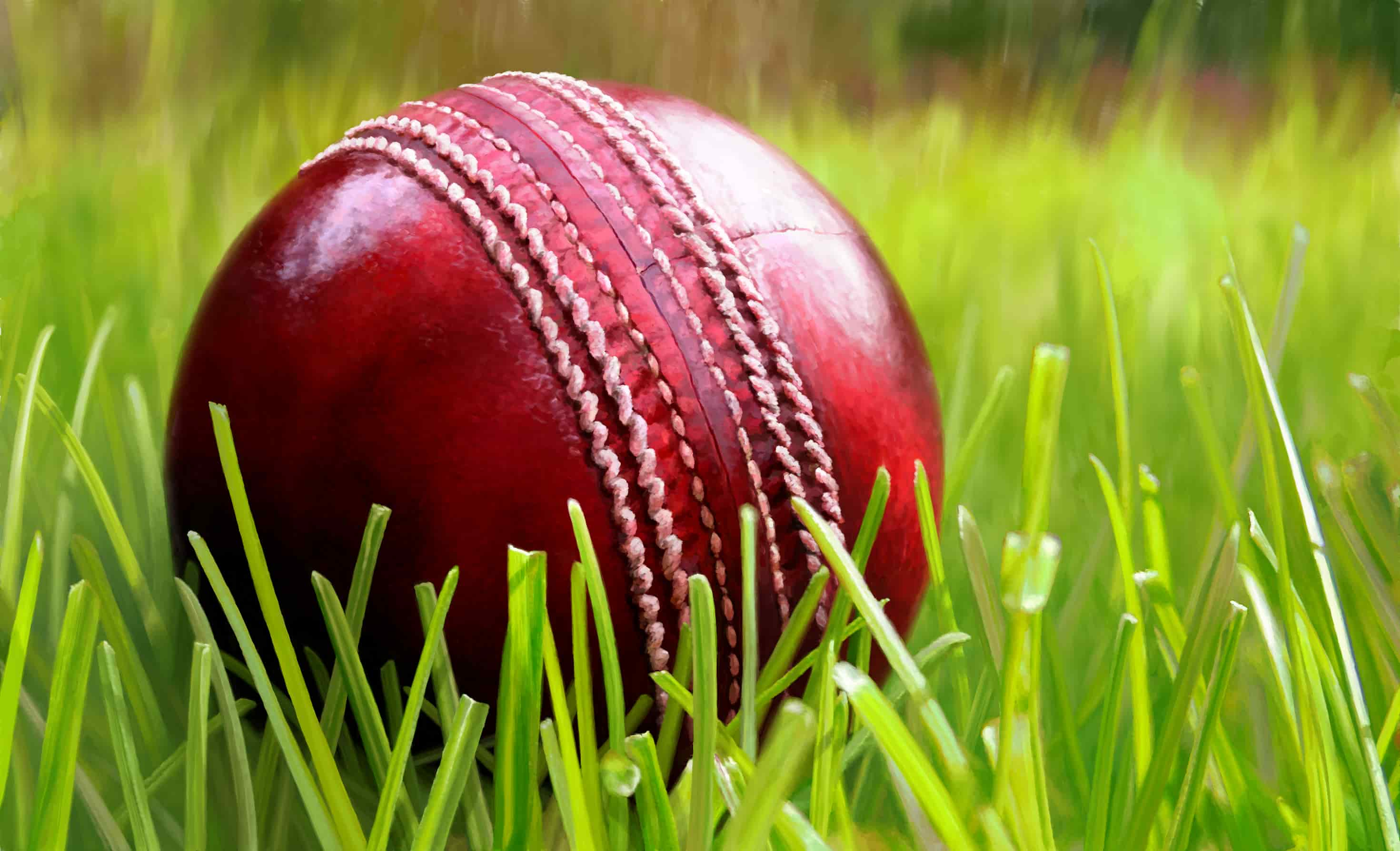 Halal Food and Mosque Guide to the 2015 Ashes