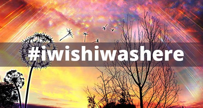#iwishiwashere - The My HalalTrip Friday Hashtag for this Week