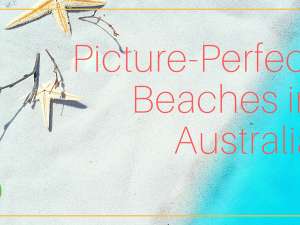 The Best Beaches in Australia - The Top 10