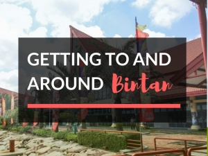 Getting To and Around Bintan Island - Everything You Need to Know
