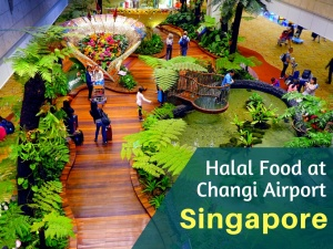 17 Spots to Get Halal Food at Changi Airport Singapore