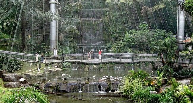 Kuala Lumpur Bird Park KL Malaysia