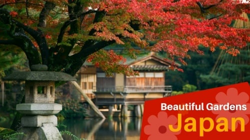 6 Of The Most Beautiful Gardens in Japan
