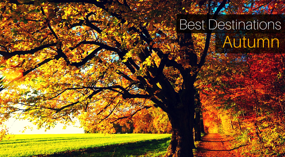 5 Best Destinations For An Autumn Experience