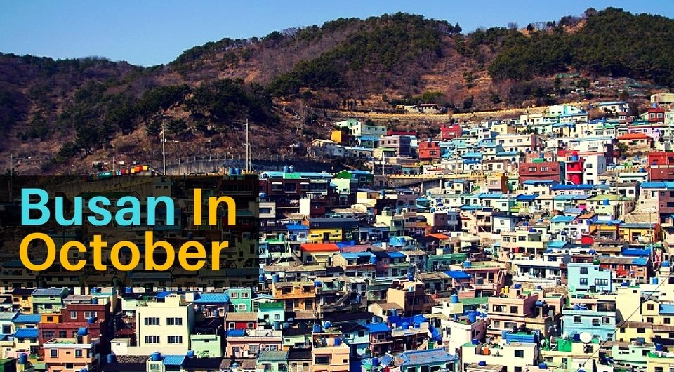 5 Things to Do in Busan in October