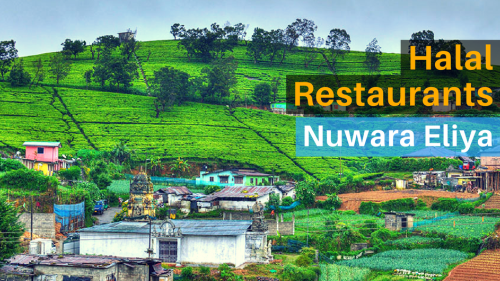 The Best 8 Halal Restaurants in Nuwara Eliya, Sri Lanka
