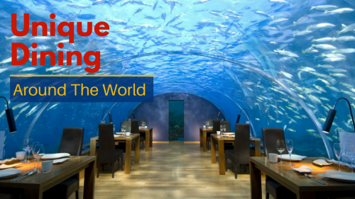 10 Unique Dining Experiences Around The World