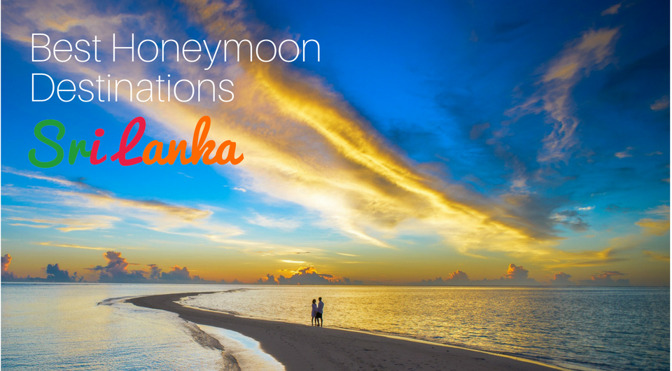 The 5 Best Honeymoon Destinations in Sri Lanka