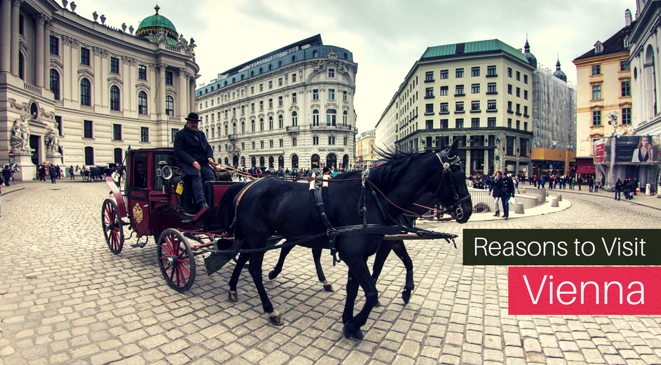 5 Reasons Vienna needs to be your next Holiday Destination