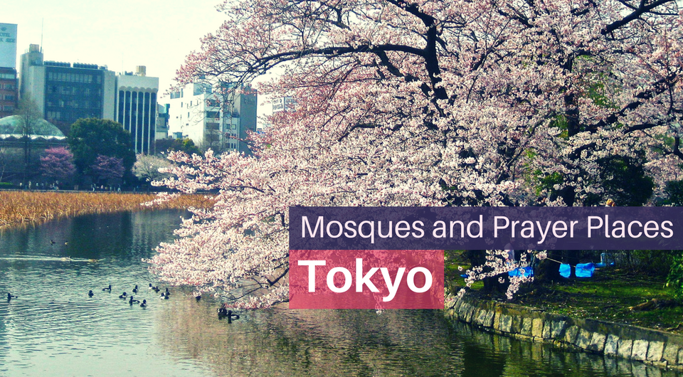 Find Mosques and Prayer Places in Tokyo