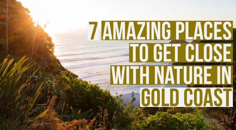 7 Places to Get Real Close to Nature in Gold Coast, Australia