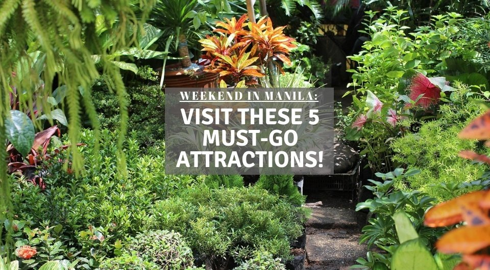 Weekend In Manila: Have An Unforgettable Getaway By Visiting These 5 Must-Go Attractions