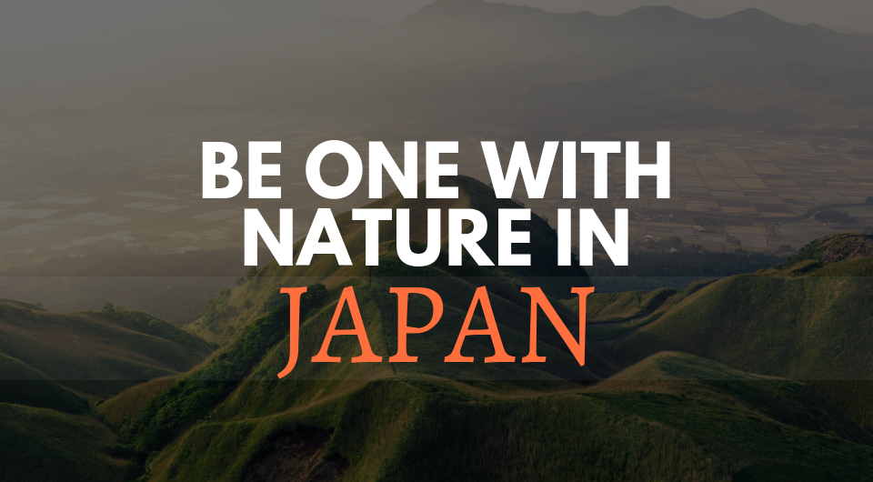 Explore Japan On A Whole New Different Level! Nature Junkies, This Is For You!