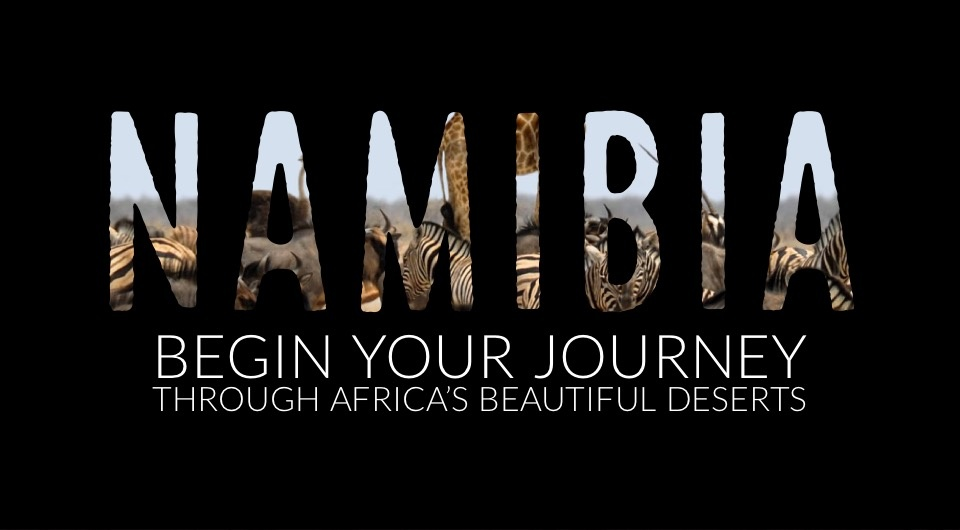 Surround Yourself With Wildlife & Thread Through Africa's Beautiful Deserts in Namibia, South Africa