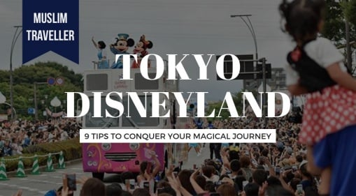 9 Tips To Conquer Your Journey To The Magical Tokyo Disneyland From Chiba, Japan!