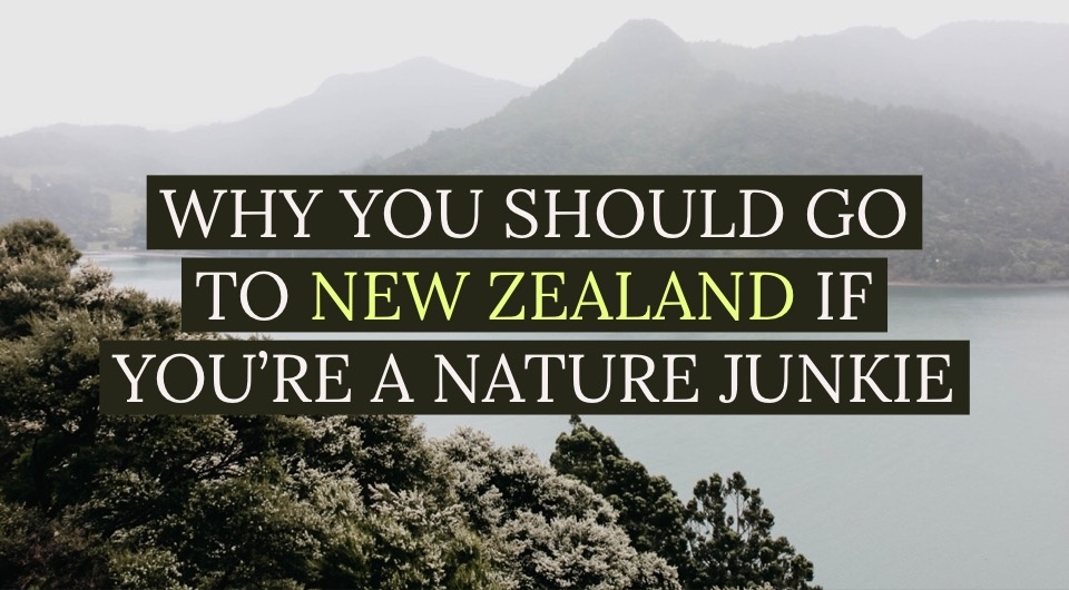 Nature Junkie? Here's Why New Zealand Should Be On Your Bucket List
