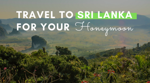Travel to Sri Lanka for your Honeymoon!