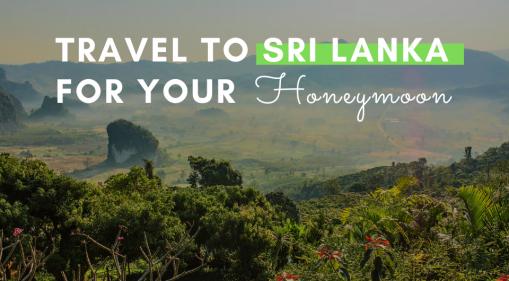 Travel to Sri Lanka for your Honeymoon!
