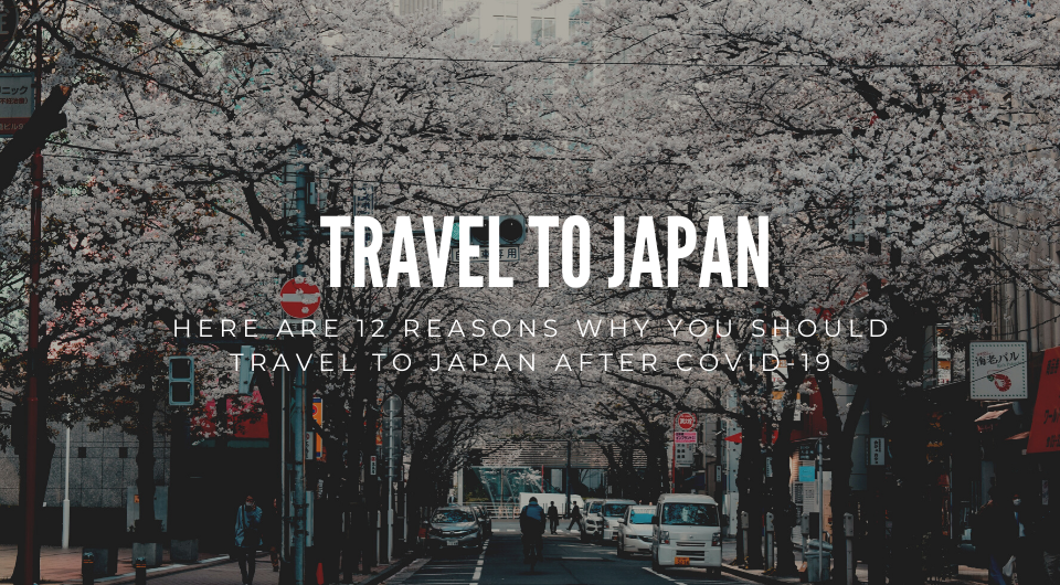 Plan To Travel After Covid-19? Here Are 12 Reasons Why You Should Travel To Japan!