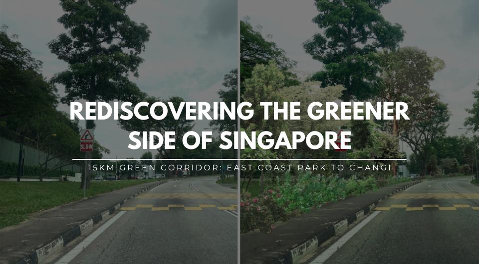 Rediscovering the Greener Side: East Coast Park - Changi Beach Park Green Corridor