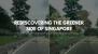 Rediscovering the Greener Side of Singapore: East Coast Park - Changi Beach Park Green Corridor