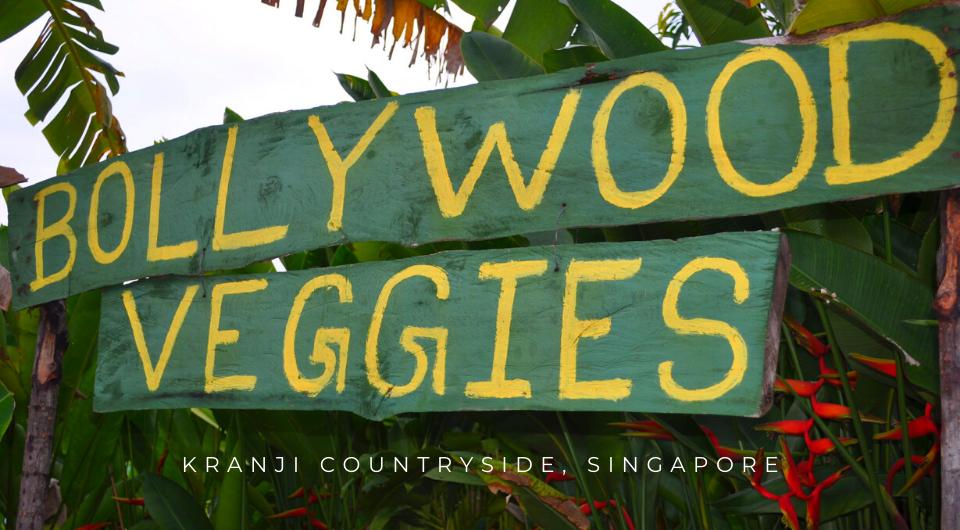 Bollywood Veggies: Singapore's Eccentric & Refreshing Paradise On Earth
