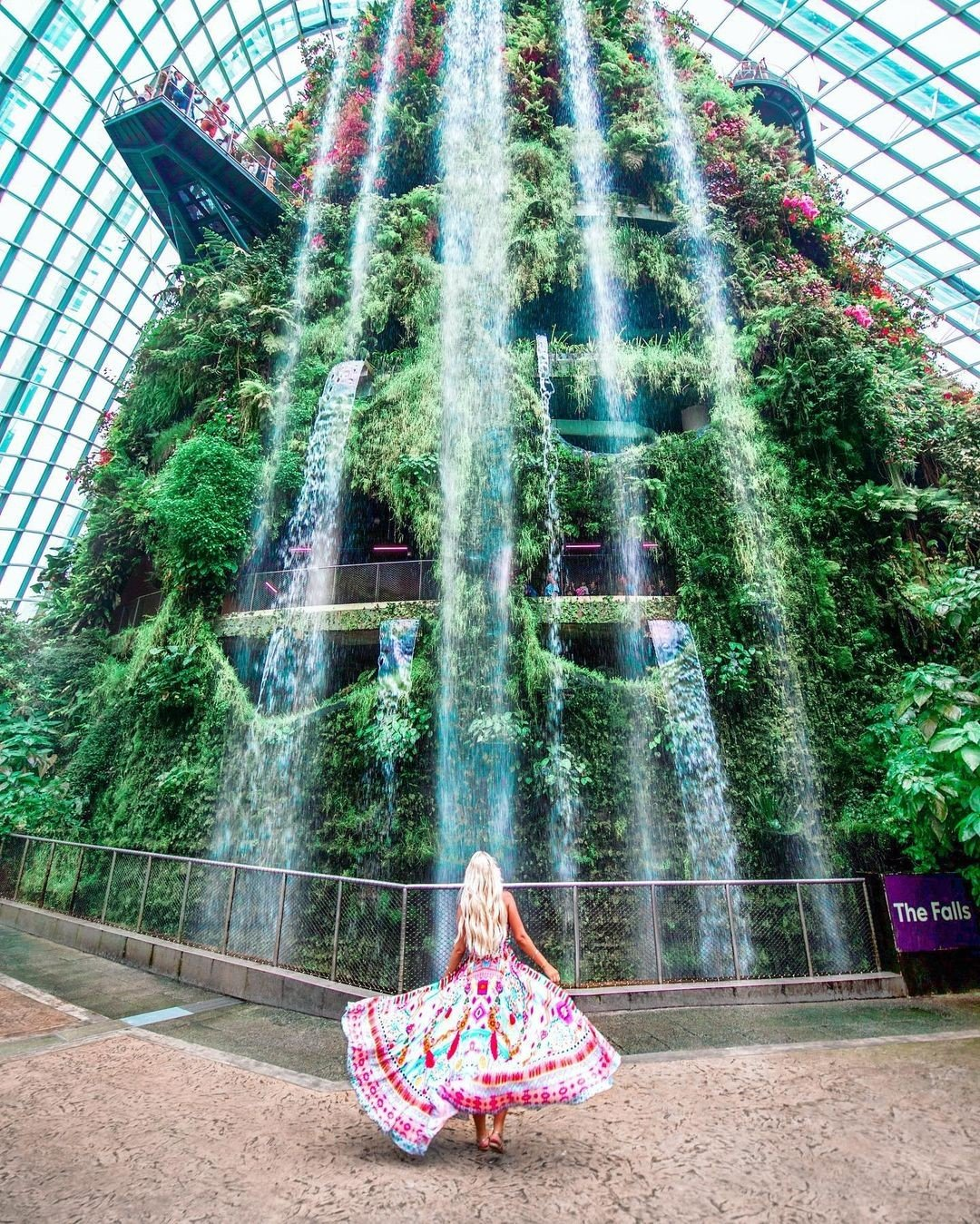 Cloud Forest Gardens by the Bay: Places to take photos in Singapore