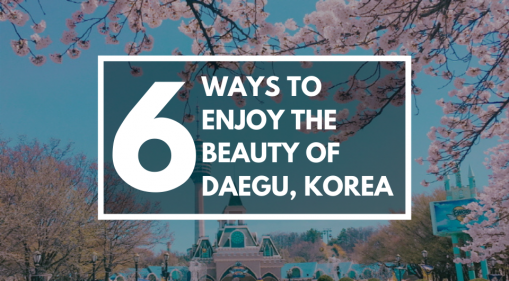 6 Ways to Enjoy the Beauty of Daegu, the