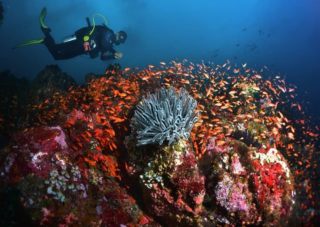 Pulau Weh Sabang Aceh Indonesia Pantee Peunateung