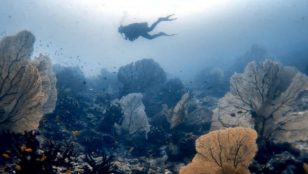 Batee Tokong Pulau Weh Sabang Aceh Indonesia