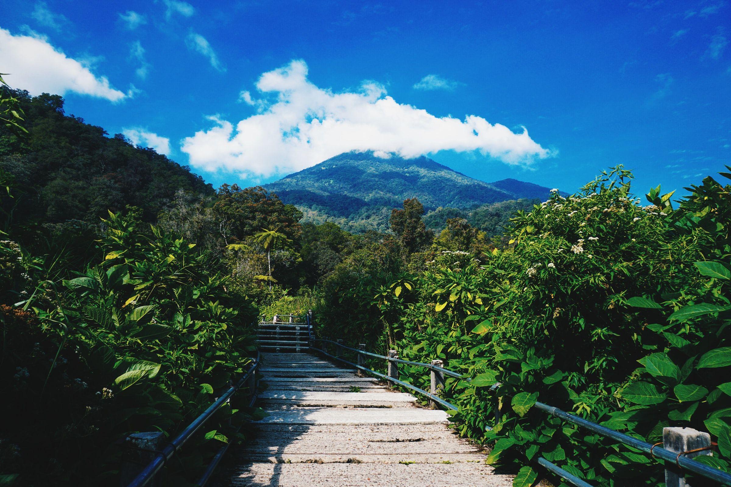 Gunung Gede Pangrango Indonesia