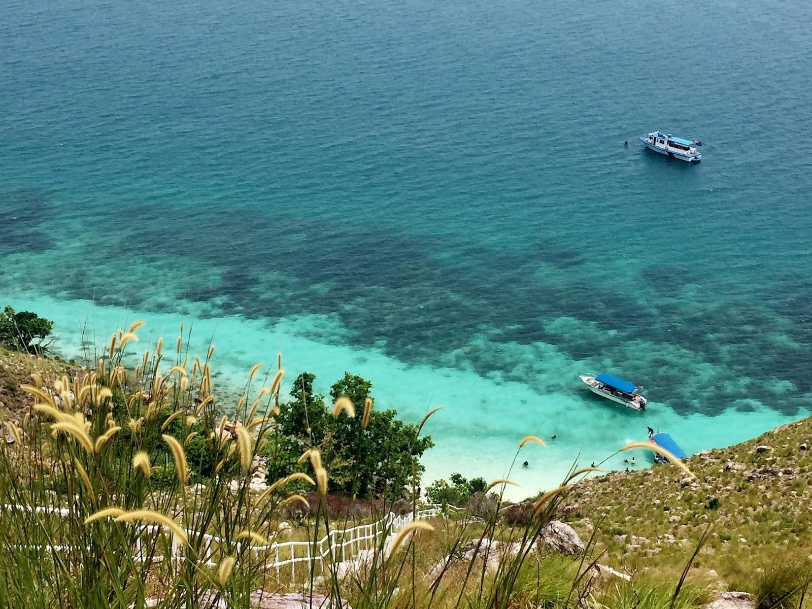 Pulau Harimau Johor Bahru