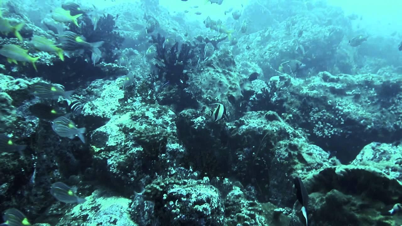 Pulau Weh Sabang Aceh Indonesia Limbo Gapang