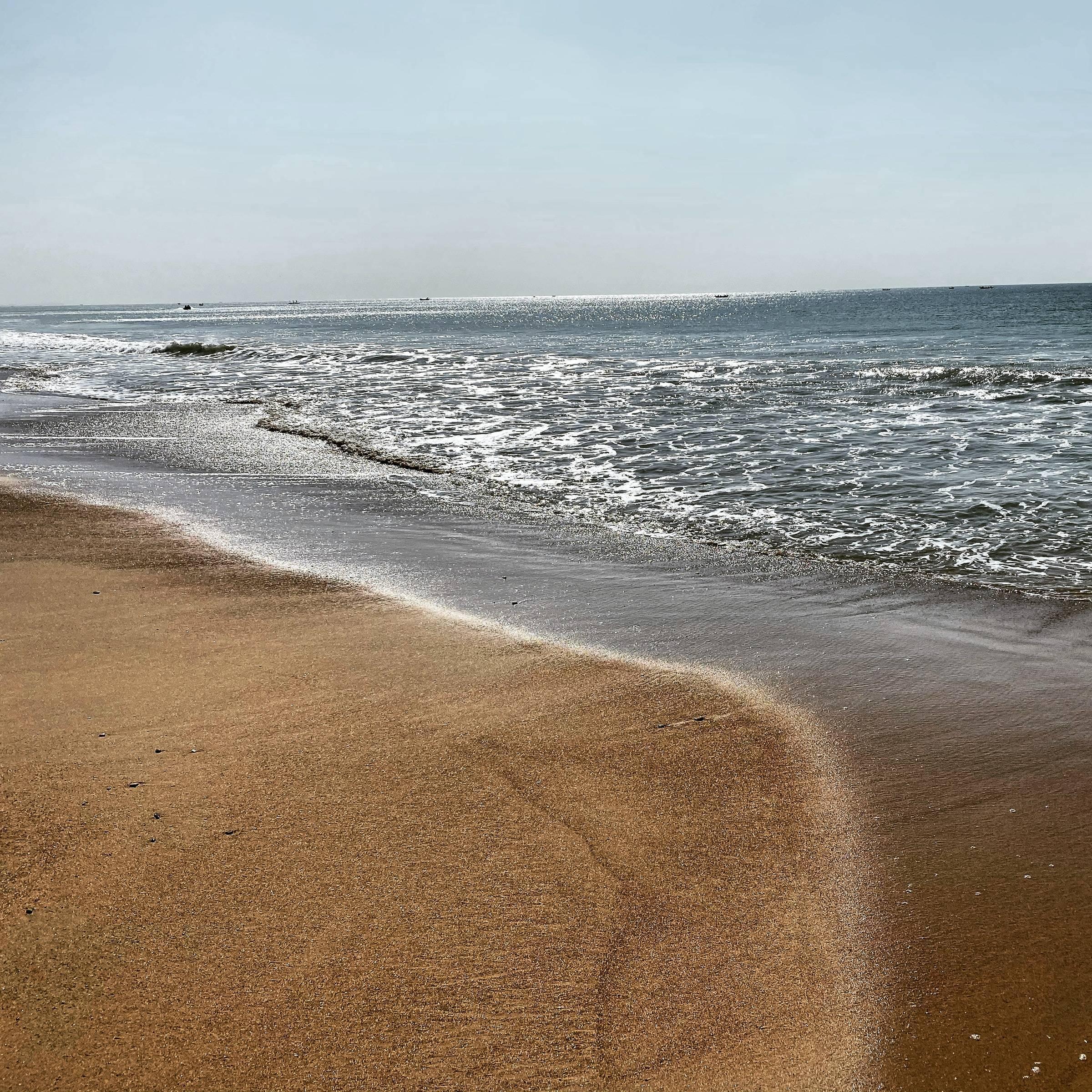 Things to do in Karachi Beach Turtle Beach