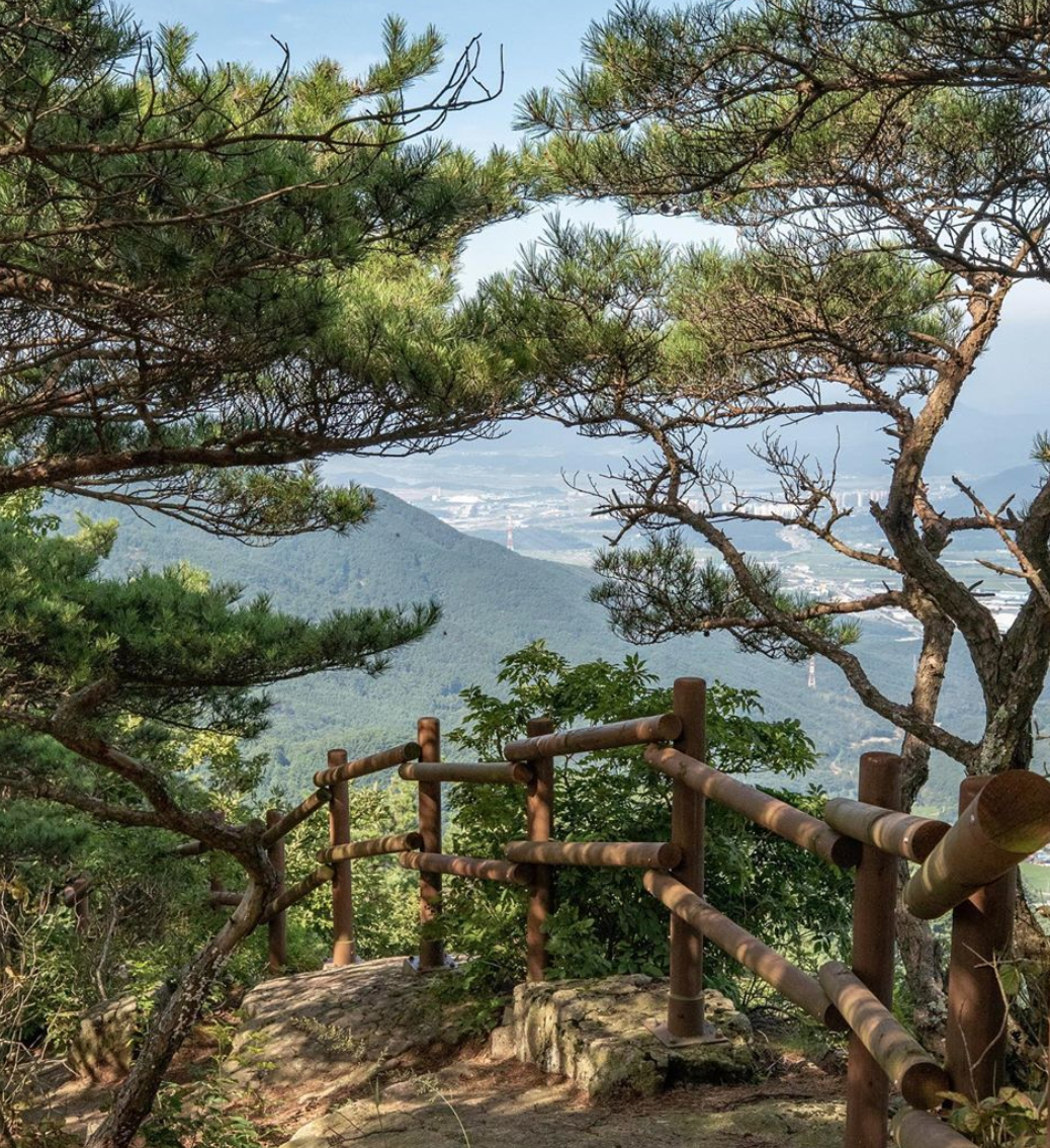 Biseulsan Recreational Forest, things to do in south korea, daegu