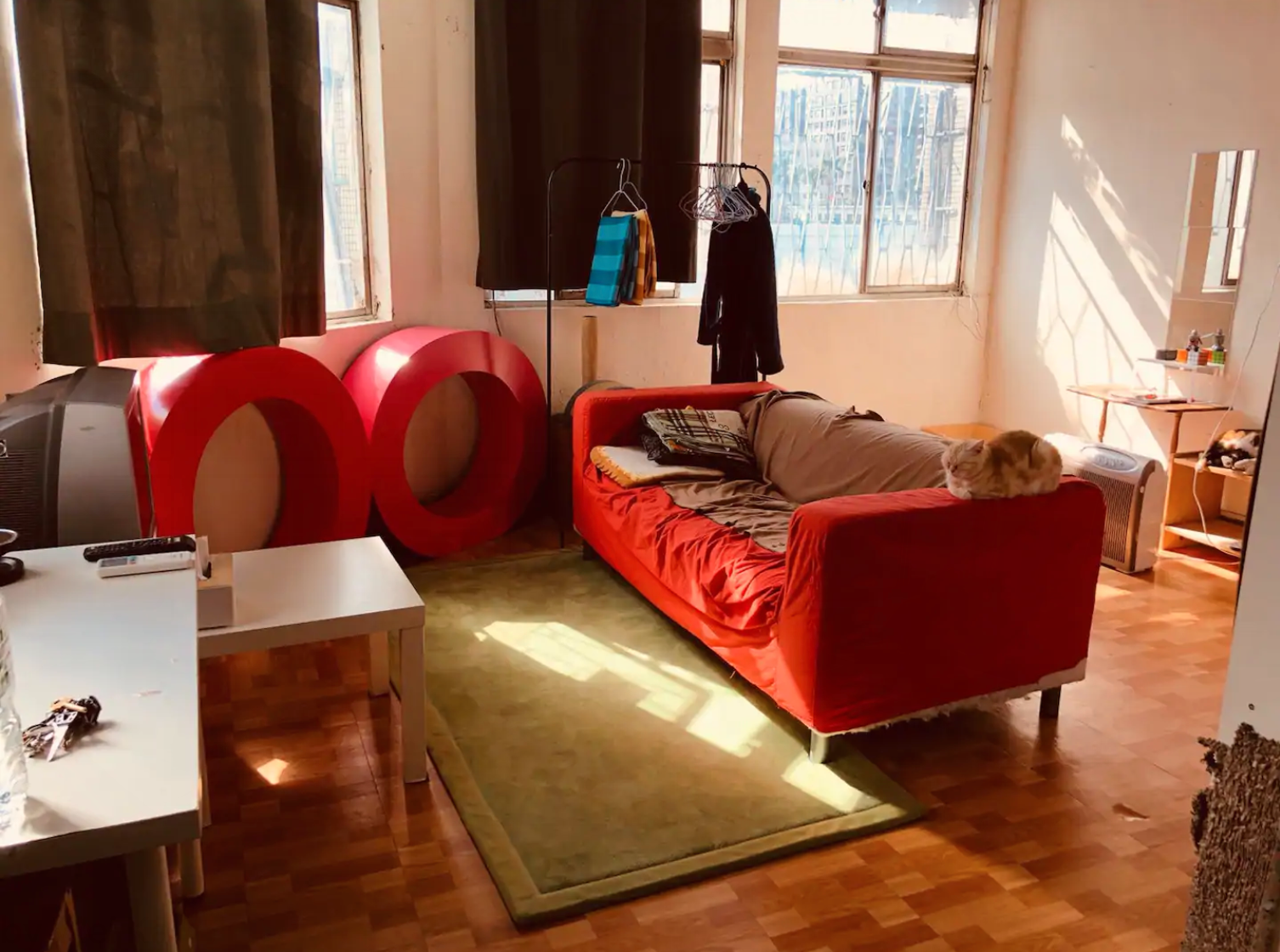 Airbnb Taipei, Taiwan for cat lovers